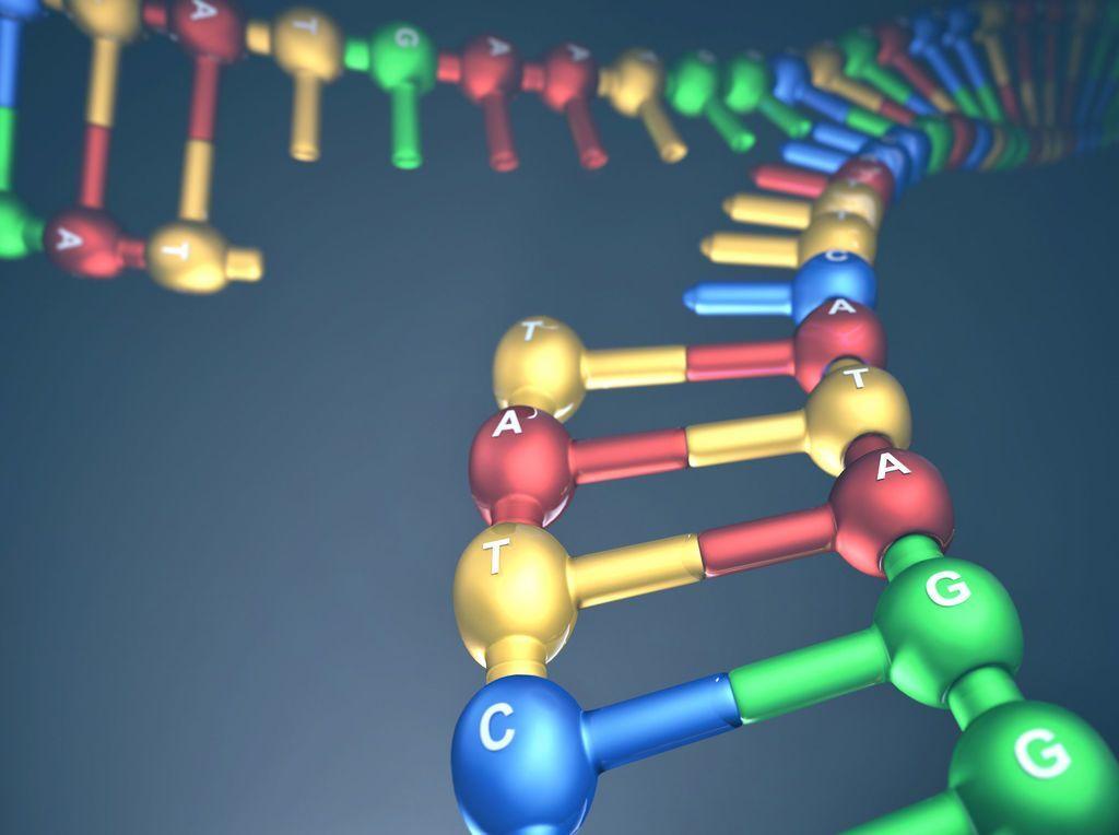 بروتين يفسر مقاومة بعض السرطانات للعلاج الكيميائي لماذا لا تتأثر بعض أنواع السرطان بالعلاج الكيميائي علاج السرطان مقاومة الخلايا السرطانية للعلاج