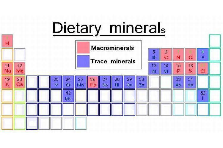 المعادن في الطعام: جانب من الجدول الدوري للعناصر، يبين المعادن الغذائية اللازمة، بعضها مثل الصوديوم والكالسيوم مطلوب بكميات كبيرة نسبيًّا، البعض الآخر مثل اليود والسيلينيوم مطلوب بكميات ضئيلة فقط.
