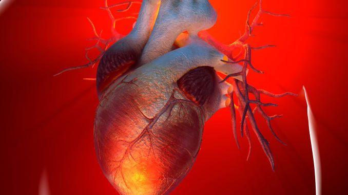 الناجون من نوبات قلبية أكثر عرضة للإصابة بالسرطان - أمراض التصلب العصيدي القلبية الوعائية ASCVD - خطر الإصابة بالسرطان - أمراض القلب