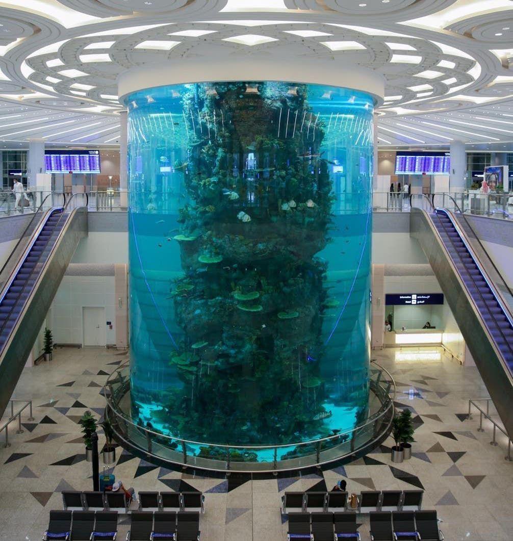 حوض الأسماك بمطار جدة