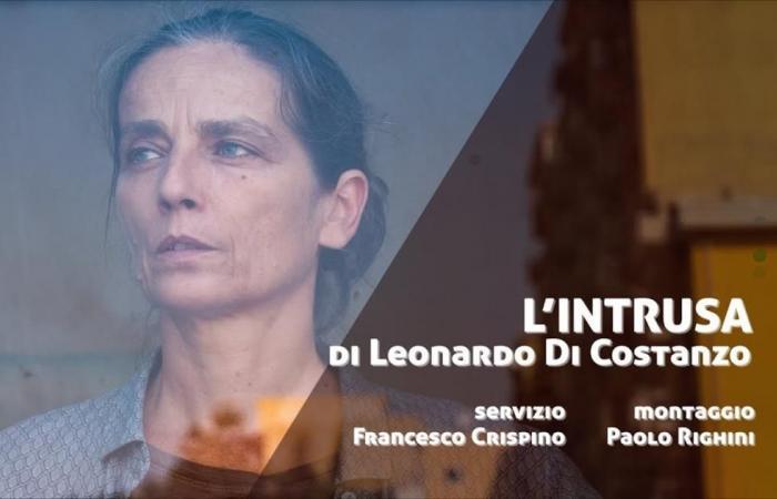 فيلم إيطالي يفوز بالهرم الذهبي لمهرجان القاهرة