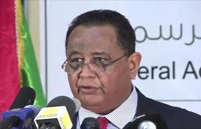 غندور: ترسيم الحدود المصرية السعودية يمس حق السودان
