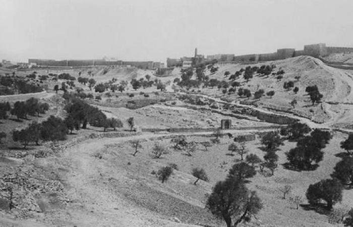 كلام عند مدخل القدس