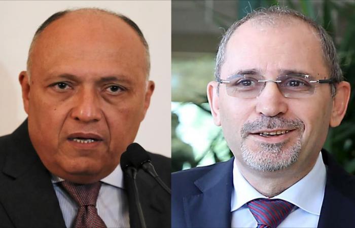 وزيرا خارجية الأردن ومصر يبحثان قرار ترمب