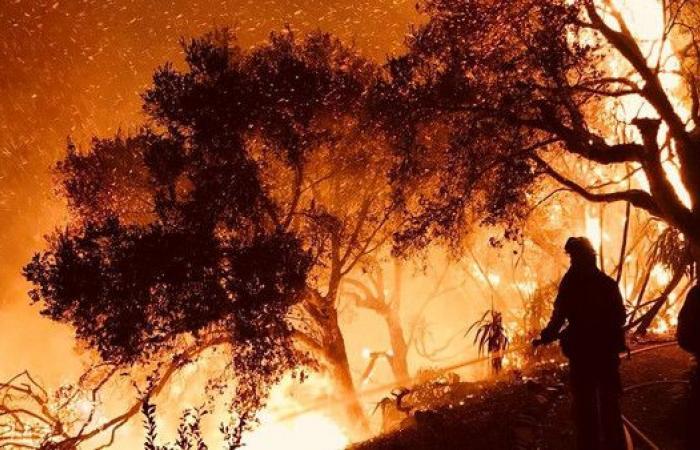 نار الغابات مستمرة..وفيديو يفيض إنسانية يشغل كاليفورنيا