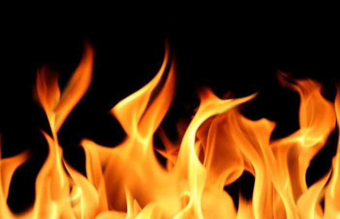 إخماد حريق أعشاب وأشجار في النمورة كسروان