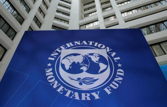 وزير: صندوق النقد سيصرف 319 مليون دولار لتونس