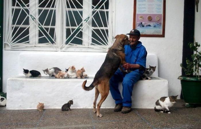 مسيرة لجمعيات الرفق بالحيوان وناشطين في الجناح تنديدا بتسميم الكلاب