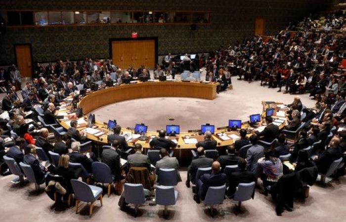 6 دول تنضم رسميا إلى مجلس الأمن
