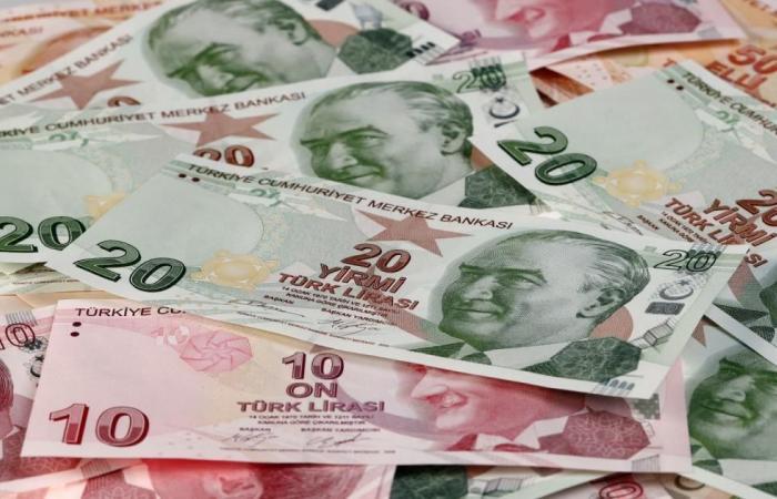 توقع نمو اقتصاد تركيا بـ4.8% السنوات الـ5 المقبلة