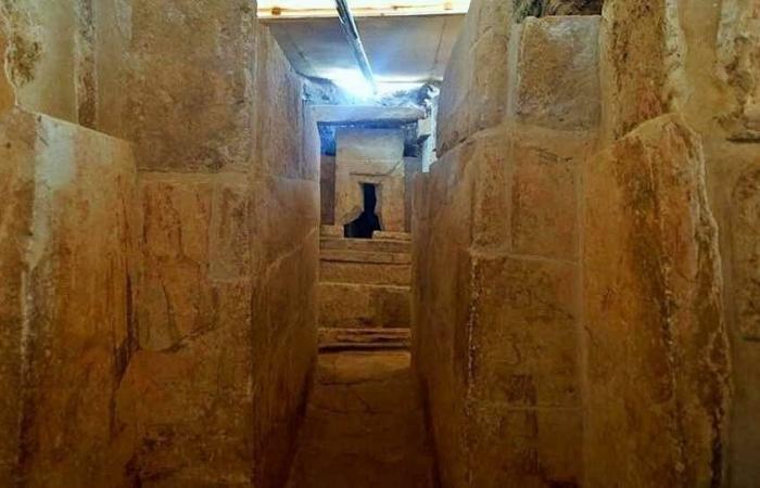 صور لمقبرة فرعونية تكشف وظيفة القرود في مصر القديمة