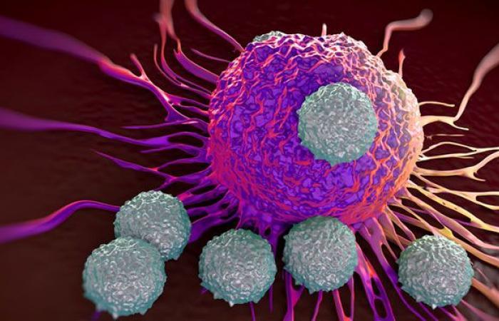 ما هي أسباب مرض السرطان؟