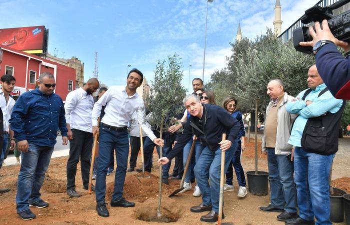 مشهد جديد على بيروت.. 10452 شجرة!