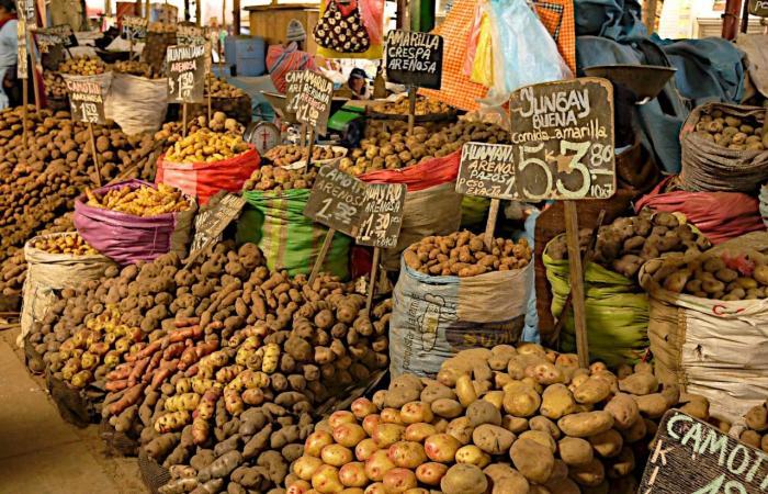 سراويل النساء وسعر البطاطا.. هكذا يُحتسب التضخّم في بريطانيا!