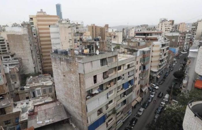 """""""عاصفة"""" حشرات طائرة تجتاح بيروت.. تلتصق بالمواطنين وتصيبهم بفورات جلدية"""