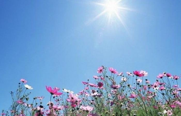 الحرارة الى ارتفاع.. وكتل هوائية دافئة تستمّر حتى الأربعاء