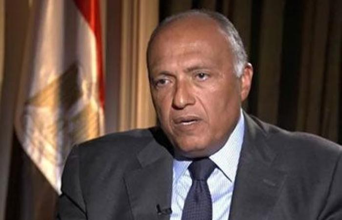 وزير الخارجية: مصر تسعى لخلق تعاون أكبر مع دول حوض النيل