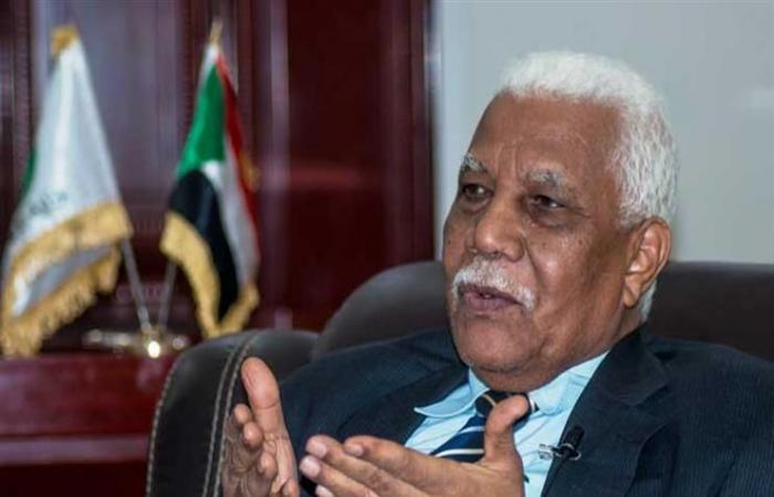 وزير الإعلام السودانى يصل إلى القاهرة