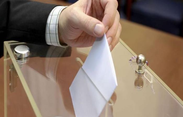 نائب يطالب بالتصويت الإلكتروني في الانتخابات المحلية المقبلة