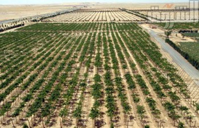 «المجتمعات العمرانية»: فتح باب التقدم للمتخلفين عن مواعيد شراء أراضي الحزام الأخضر