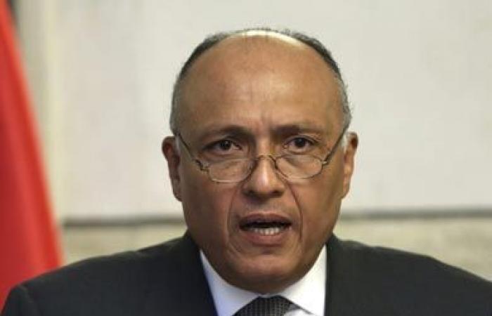 مصر تستنكر استطلاع «روسيا اليوم» حول حلايب.. وشكري يلغى حواره مع القناة