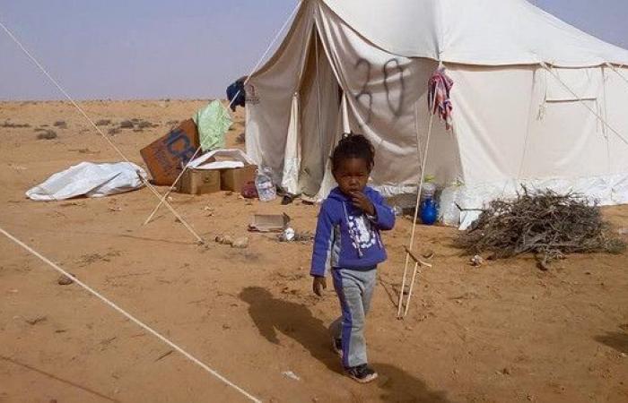 ليبيا..ميثاق صلح بين تاورغاء ومصراتة ينهي خصومة 7 أعوام
