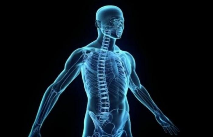 تعرف على الأعضاء الداخلية التي بإمكانك العيش بعد استئصالها