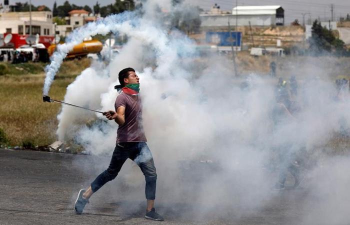 فلسطين | إصابة متضامنة نرويجية خلال مواجهات مع الاحتلال في كفر قدوم