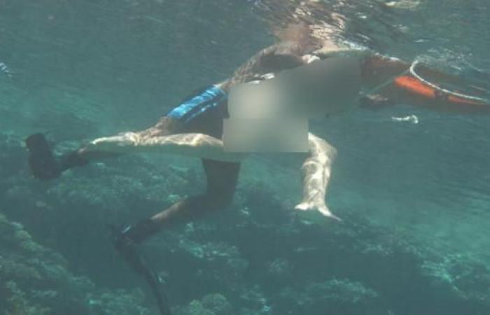 مصر | مصر.. توقيف المدرب الذي تحرش بسائحة تحت الماء