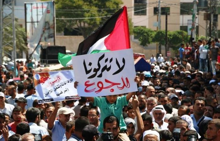 فلسطين | مشعشع: نعمل على توفير شبكة امان مالية