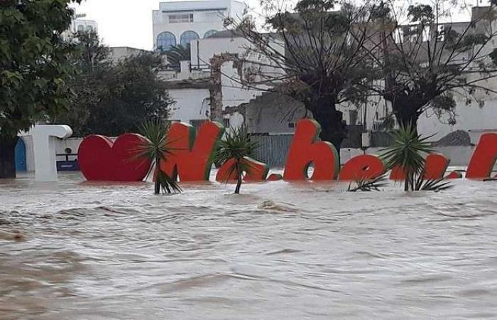 فلسطين | فيضانات مرعبة تضرب تونس وتخلف خسائر بشرية ومادية