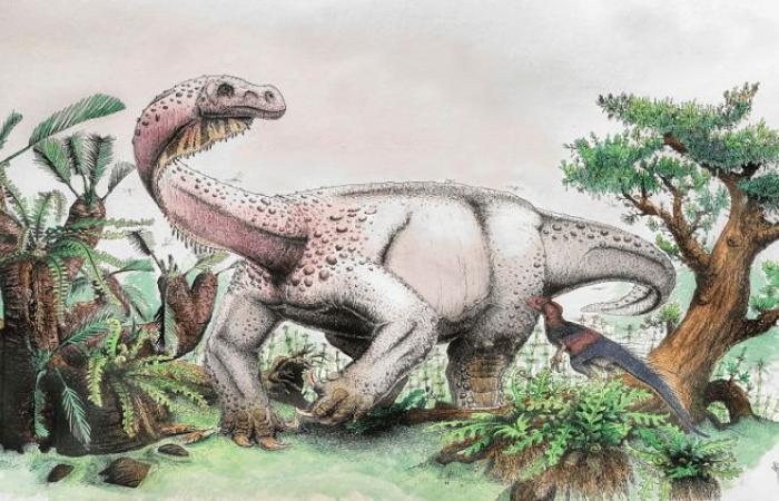 فلسطين   فيديو ..اكتشاف أكبر مخلوق عاش على الأرض قبل 200 مليون عام