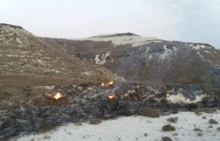 بالصور: حريق اعشاب في برغون
