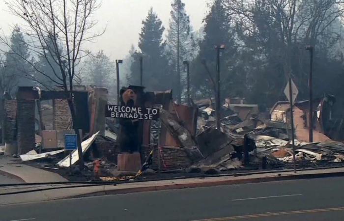 دولي | حرائق كاليفورنيا.. ضحايا بالعشرات ومئات المفقودين