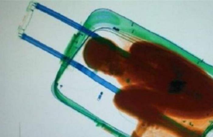 طريقة غريبة.. نجمة تتنقّل داخل حقيبة سفر!