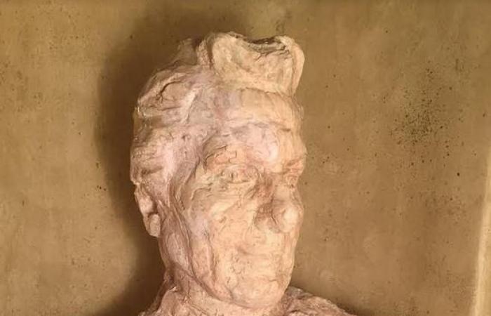 زوجة يوسف إدريس تتحدث عن تفاصيل حياة الروائي الشهير