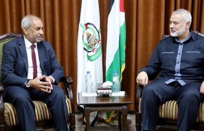 فلسطين | جنوب افريقيا تؤكد موقفها الداعم للحقوق الفلسطينية