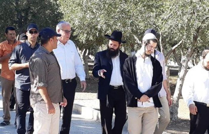 فلسطين   وزير الزراعة الإسرائيلي يقود اقتحامات الأقصى