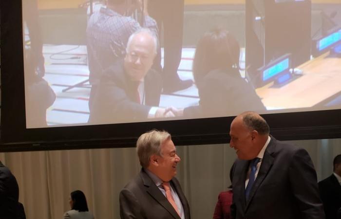فلسطين   شكرى يؤكد على الدور القيادى لمجموعة الـ77 والصين فى جهود إصلاح الأمم المتحدة