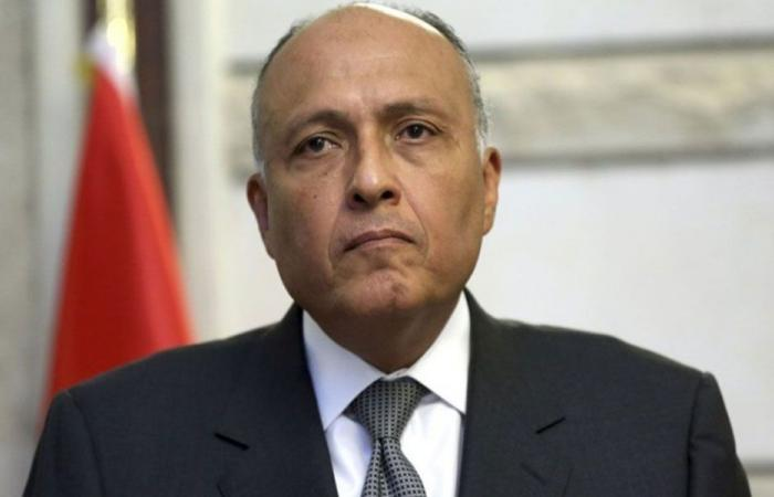 وزير الخارجية المصري في بيروت