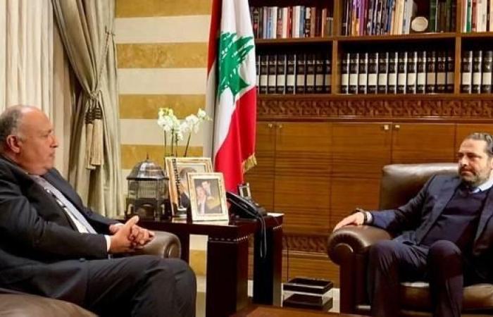 مصر   شكري للحريري: نسعى لتحصين دول الجوار من تدخلات إقليمية