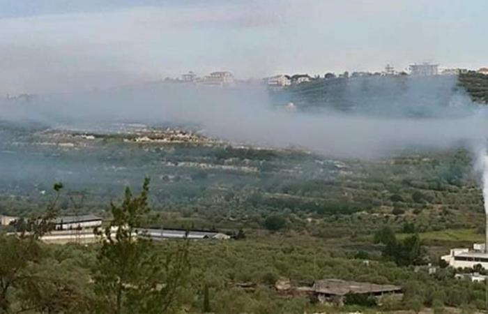 قرار بإقفال مصنع عصر جفت الزيتون في بزيزا - الكورة!