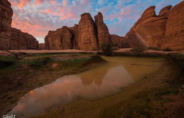 الخليح | صور..تعرف على محمية شرعان ووجهة العالم الطبيعية في 2023