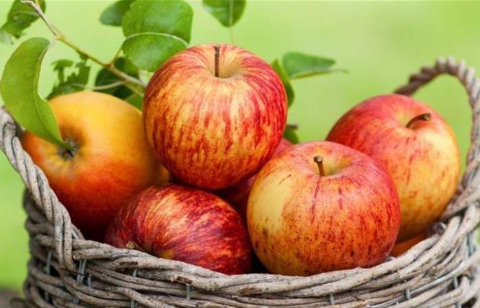 روسيا تحارب التفاح التركي!