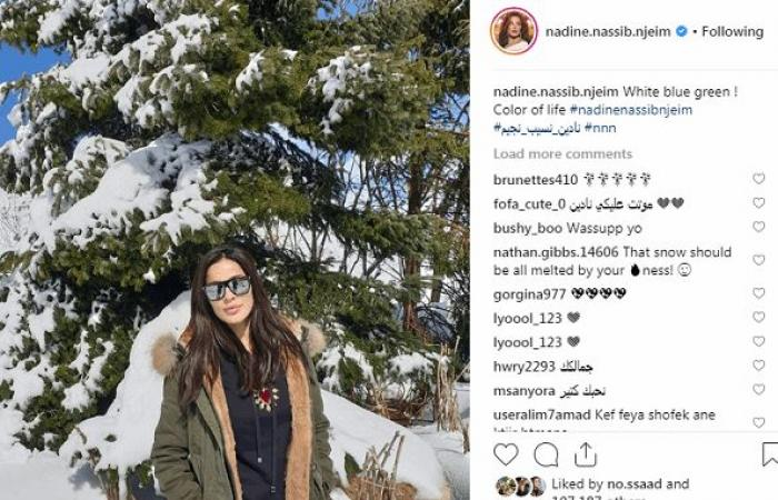 نادين نجيم وزوجها على الثلج.. شاهدوا كيف أطلت!