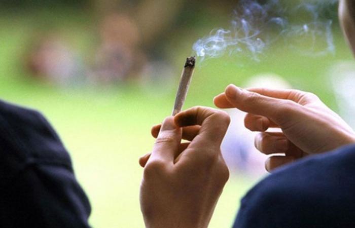 في الصالومي… توقيف 3 مروجي مخدرات
