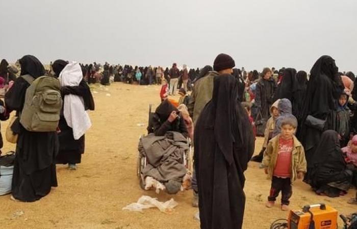 سوريا | تكاتف دولي للقضاء على داعش.. وعين التنظيمعلى السويداء
