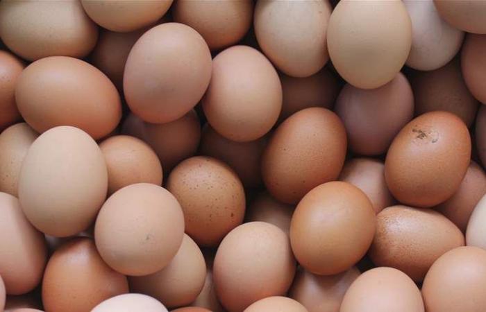 البيض يشعل أزمة.. يُهرب من هذا البلد والخسائر بالمليارات!