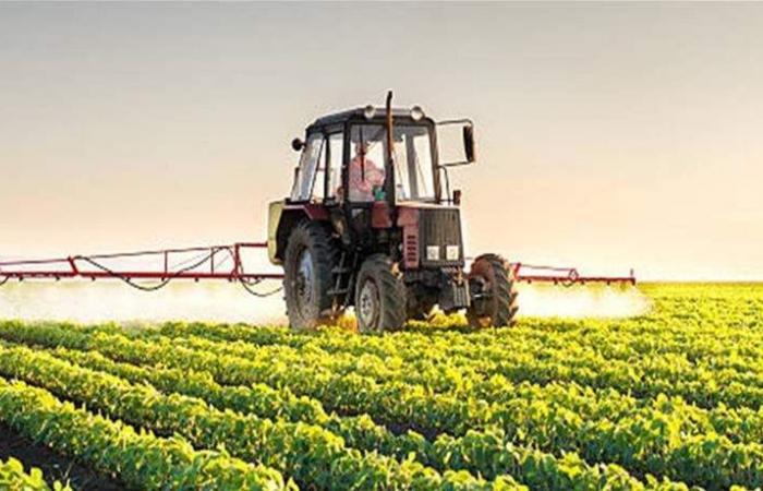 كوريا الشمالية سجّلت أدنى مستوى من المحصول الزراعي.. والسبب؟