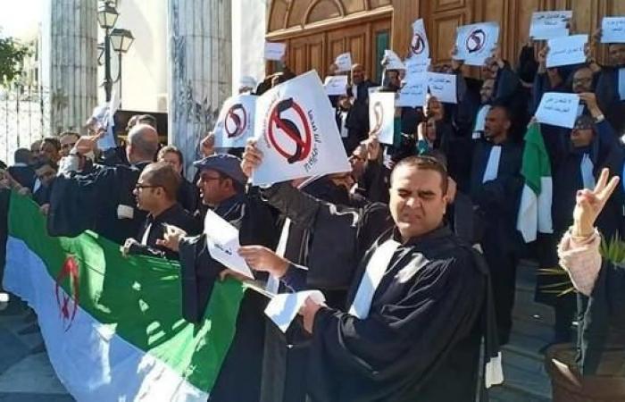 الجزائر.. المحامون يتجهون للمجلس الدستوري حاملين رسالة